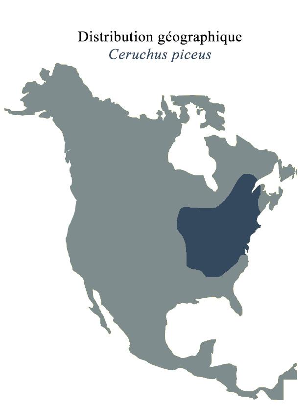 Figure 7 : Distribution géographique de Ceruchus piceus.